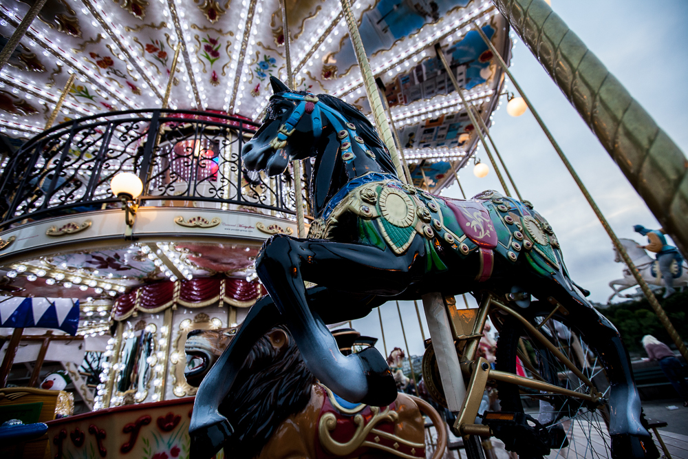 Paris: Black Carousel Horse